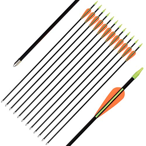 SHENG-RUI 26 Inch Fiberglass Archery Target Arrows - Practice Arrows or Youth Arrows for Recurve Bow 6 Pack