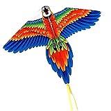 Colorido Pavo Real Loro Cometa Grande con Cuerda De Cometa, Cometa Fácil De Volar para Principiantes, Niños Y Adultos, Ideal para Actividades Al Aire Libre, Azul