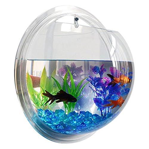 Fish Bubble - Deluxe Acrylic Wall Mounted Fish Tank w/Bonuses