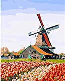 Nonebranded Pintura Al Óleo Pintura por Numeros Adultos Niños Molino De Viento País Holanda Tulipán Manualidades para Pintar DIY Cuadro Lienzo 40X50Cm