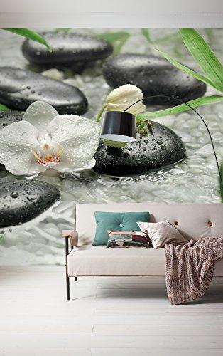 Komar 319-DV3 Vlies Fototapete Pure Tapete, Wand Dekoration, Blumen, Orchideen, Wellness, Stein, Fluss-319-DV3, bunt, 300 x 250 cm (Breite x Höhe)