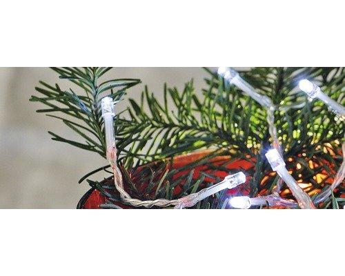 2 Stück - Lafiora LED Lichterkette - 20er - kaltweiß - transparentes Kabel - 6-Stunden-Timer - Beleuchtungsstrecke: 95 cm - Einsatzbereich: Innen - Batteriebetrieb (3x AA)