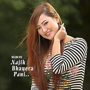 Najik Bhayer Pani