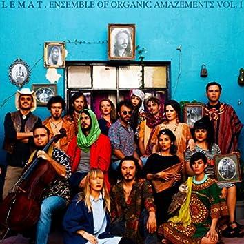 Ensemble of Organic Amazements, Vol. I