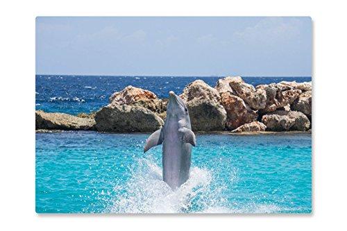 Rutschfeste Design-Schreibunterlage Delfin 70 x 50 cm, aus DA-Media in Premium-Qualität, Malunterlage, Schreibtischauflage, Schreibtischunterlage