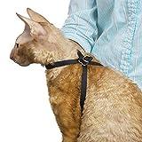 Top Performance Nylon Adjustable Cat Grooming Harness, 1/2-Inch, Black