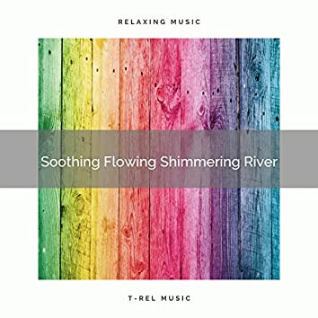 2021 New: Soothing Flowing Shimmering River