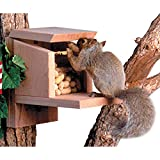 Songbird Essentials Squirrel Munch Box