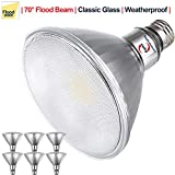 Explux Classic Full Glass PAR38 LED Flood Light Bulbs, Dimmable, 120W Equivalent, Indoor/Outdoor, 3000K Bright White, 6-Pack