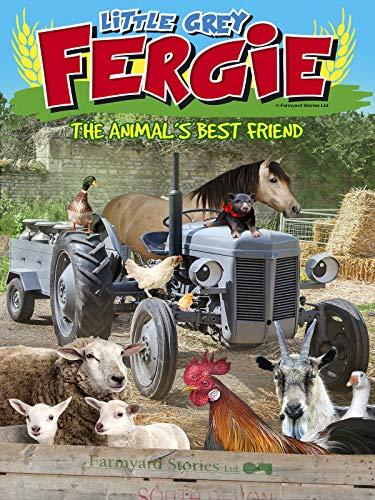 Piccolo Grigio Fergie: Il migliore amico degli animali