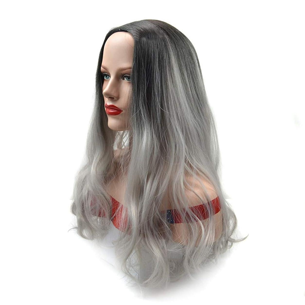HOHYLLYA 自然なおばあちゃんの灰のかつら黒の女性のパーティーのかつらのための長い巻き毛の合成かつら (色 : Grandma ash, サイズ : 60cm)