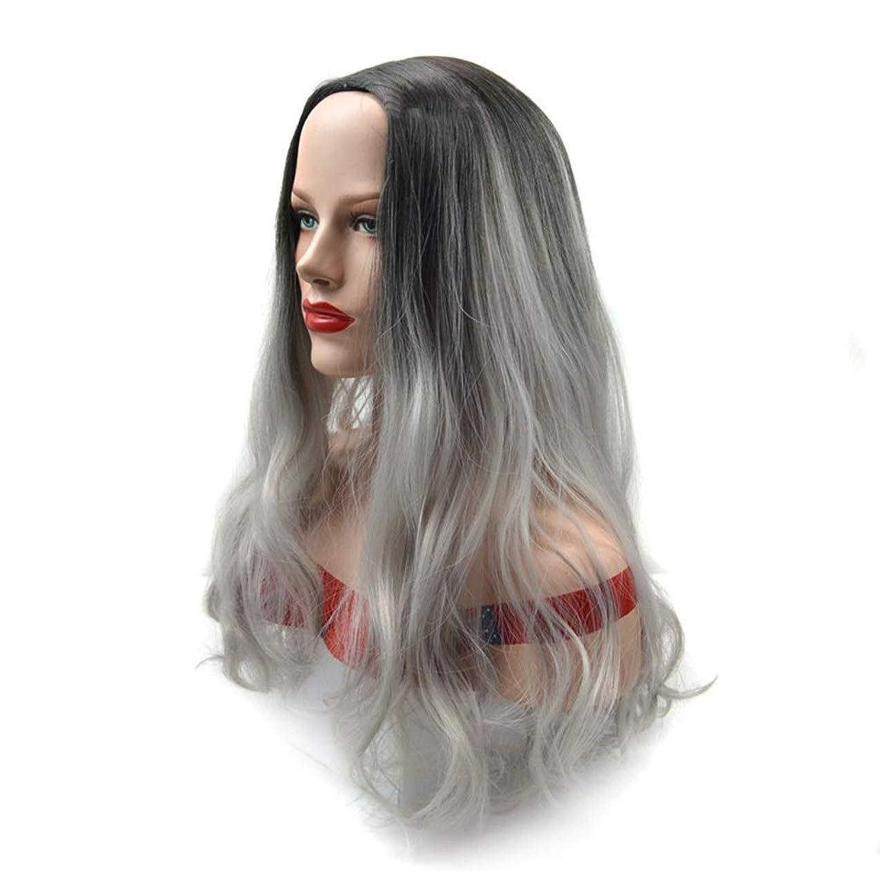メッシュできれば喉頭Yrattary 自然なおばあちゃんの灰のかつら黒の女性のパーティーのかつらのための長い巻き毛の合成かつら (Color : Grandma ash, サイズ : 60cm)