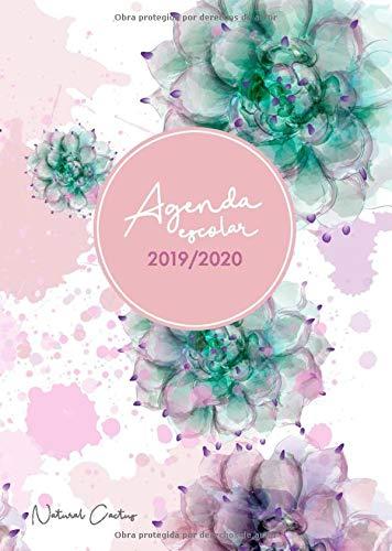 Agenda escolar 2019-2020 Natural Cactus: El Calendario Semestral y Planificador de Estudios | Agenda 2019 - 2020 para el Nuevo año Académico - español