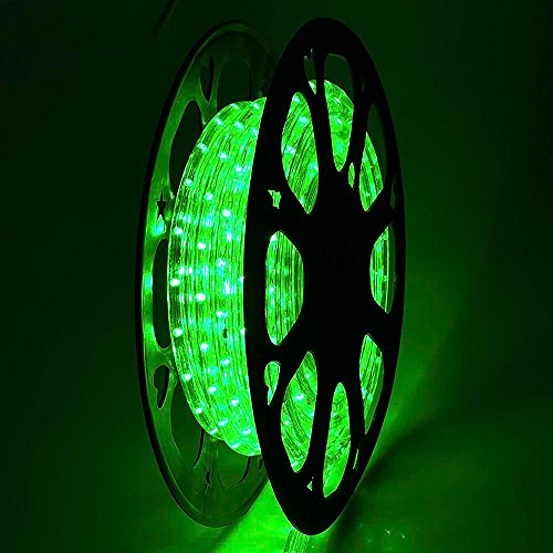 DELight Upgraded 50 FT Green 2 Wire LED Rope Light Christmas Halloween Home Holiday Valentines Party Disco Restaurant Cafe Decor