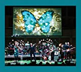 Big Big Train: Stone's Throw from the Line (Audio CD (Live))