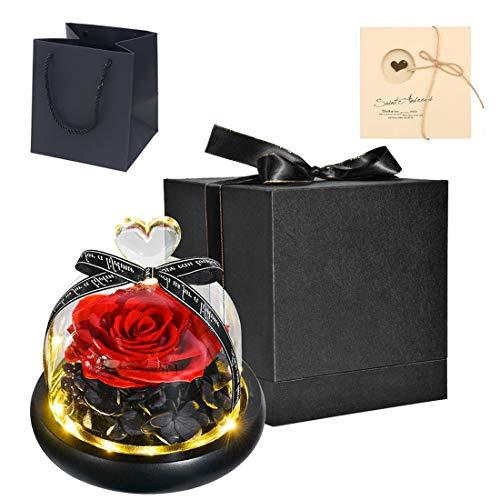 ZLDM - Rosa eterna con luci LED, rosa eterna, rosa deco la bella e la bestia, con confezione regalo + biglietto di auguri, rosa naturale 100%, regalo per donna e uomo