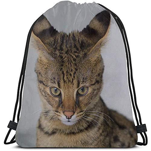 Mochila Con Cordón,Savannah Cat Closeup Feline Híbrido Serval Mujeres Domésticas Bolsa De Tiras De Cuerda Bolsa De Tiras De Cuerda De Maquillaje Gimnasios Saco Para Gimnasio,Al Aire Libre,Viajes
