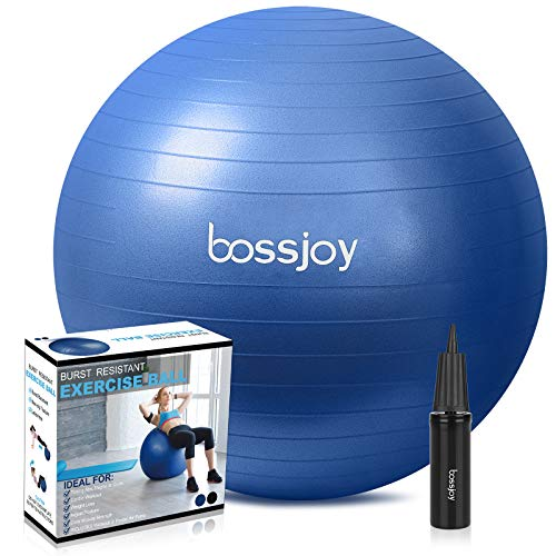 Exercise Ball 65cm Fitness Ball Anti-Burst Extra Thick Stability Yoga Ball with Pump for Home, Gym, Birthing,Core Strength Training,Physical Therapy(Blue)