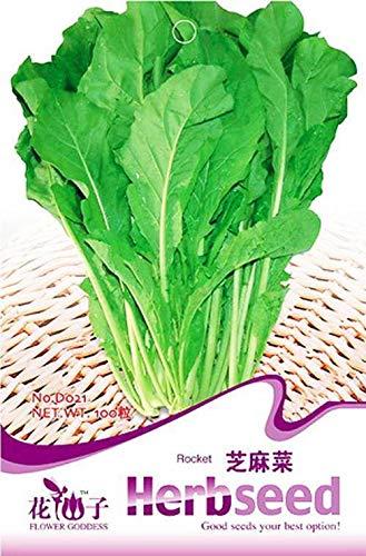 Portal Cool Emballage d'origine 100 Salade de roquette Graines Eruca Sativ Mill D021