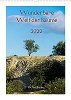 Wunderbare Welt der Baeume (Wandkalender 2022 DIN A2 hoch): Baeume und Waelder sind unser wunderbaren Wegbegleiter durch die Jahre (Monatskalender, 14 Seiten )