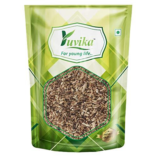 YUVIKA Kasni Seeds - Cichorium Intybus - Endive - Chicory (400 Grams)