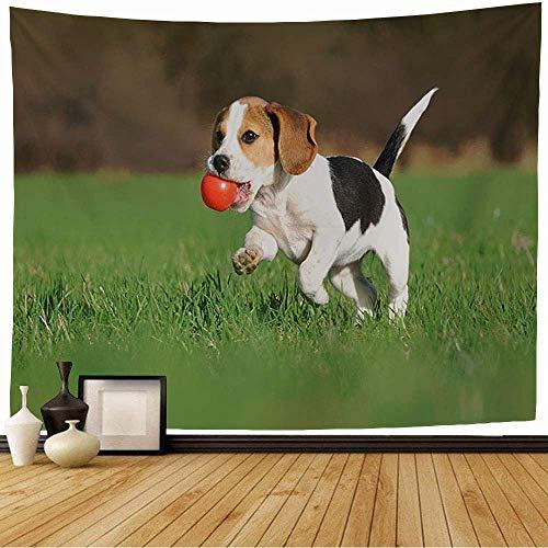 Tapiz de Pared Tapestry Red Fetch Lindo Beagle Cachorro Meses Corriendo Animales Vida Silvestre Perro Naturaleza Bola Verde Niño Pequeño Juguete Wall Hanging 80X60inch