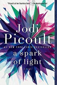 A Spark of Light  A Novel