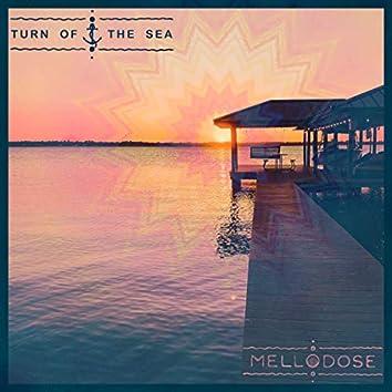 Turn of the Sea