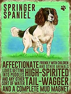 SPRINGER SPANIEL Colourful Metal Dangler Mini Hanging Sign