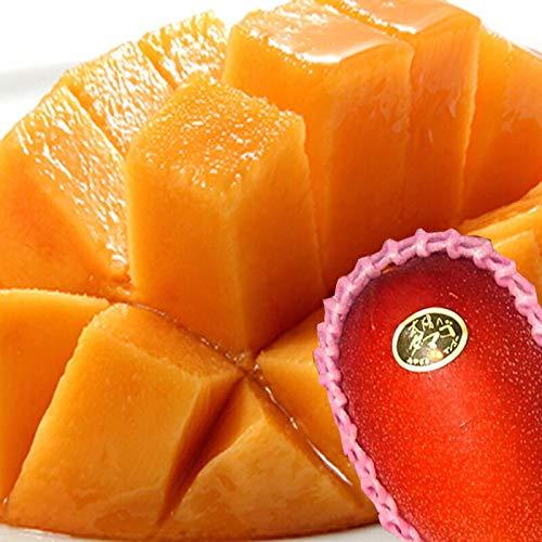 通販で買えるマンゴーのお取り寄せ人気おすすめランキング10選