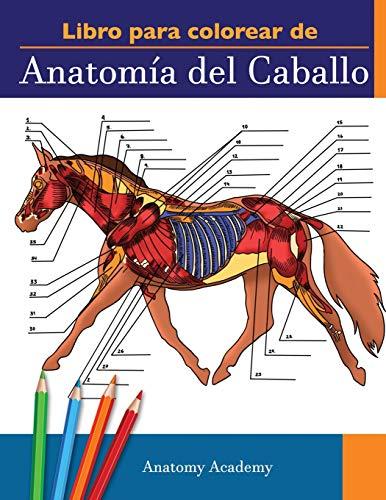 Libro para colorear de Anatomía del Caballo: Libro de Colores de Autoevaluación muy Detallado de la Anatomía Equina | El Regalo Perfecto Para ... Amantes de los Caballos y Adultos