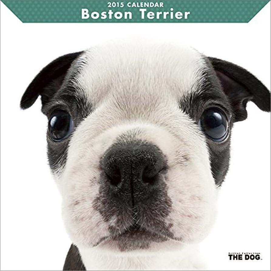 鍔スティックスポーツマンボストン?テリア カレンダー 2015年
