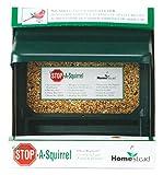 Homestead 3201S Super Stop-a-Squirrel Bird Seed Feeder, Green River Texture