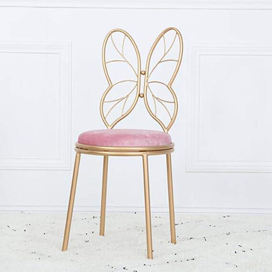 再生可能センブランスショッピングセンターJSSFQK 椅子の家の金属錬鉄製の弓の形の椅子ドレッシングテーブルドレッシングチェア4色オプション いす (色 : ピンク)