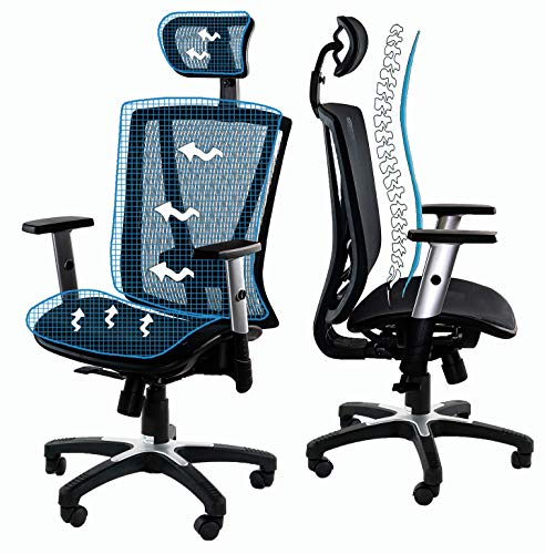 Ergomax Office Home Desk Chair Office Furniture