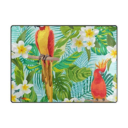 MALPLENA Pretty perroquets Zone Tapis antidérapant Pad Moyen d'entrée Paillasson Tapis de Sol Chaussures Grattoir, Polyester, 1, 63 x 48 inch