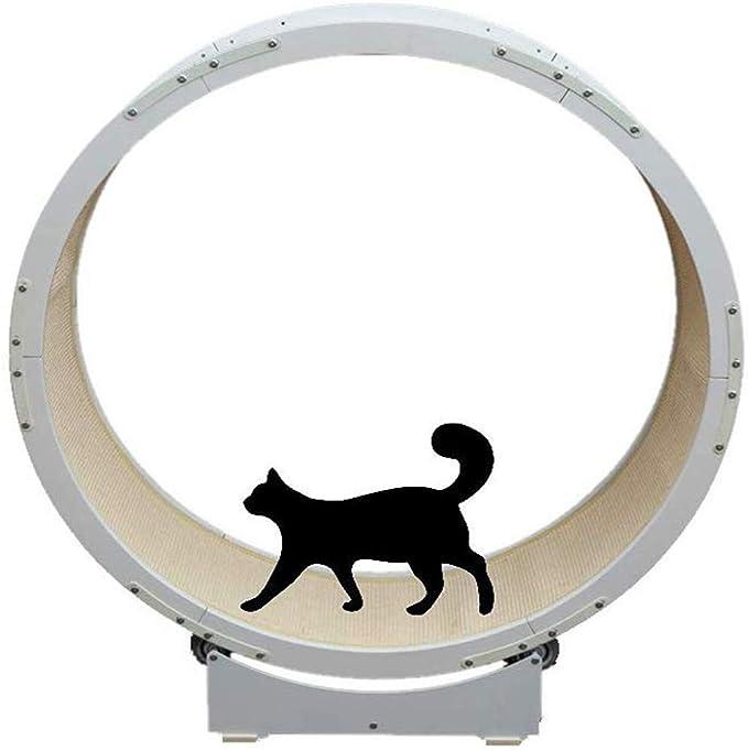 qnmm tapis roulant pour chat grand pour