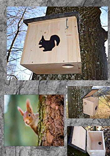Sauggrundel -   Eichhörnchenkobel