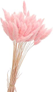 Yongrow Rabbit Tail Grass,Colorful Natural Material Artificial Plant Stems Pastoral Style Dried Flowers Bouquets Ovatus Bunny Tails(Pink)