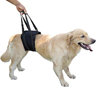 Morezi Dog Lift Harness Sling ACL Brace Limping Help Up Aid Veterinarian Approved for Cruciate Ligament Support,Canine Arthritis,Rehabilitation,Poor Stability,Joint Injuries,Mobility and Recovery