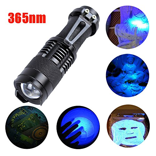 AmyGline LED Taschenlampe Violette Taschenlampe Zoomable Led UV Taschenlampe 365nm Ultra Violet Schwarzlicht AA Batterie