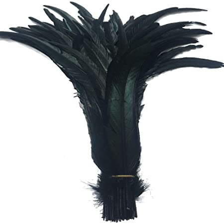 KOLIGHT Set of 50pcs 14~16inch Natural Rooster Coque Tail Feathers for DIY Home Wedding Party Office Decoration Black