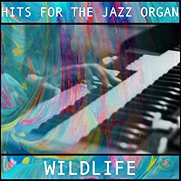 Hits for the Jazz Organ