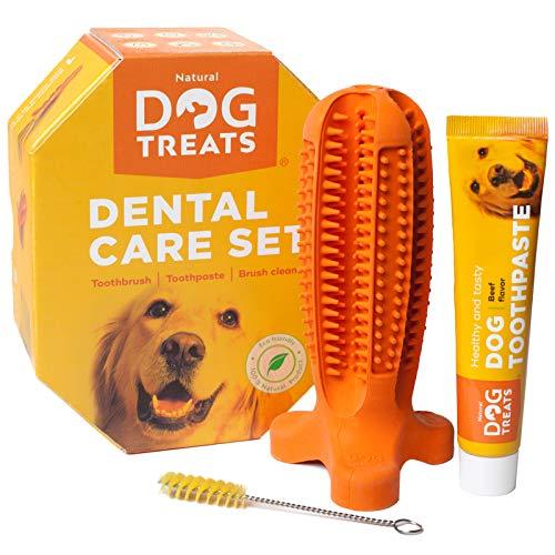 Natural Dog Treats Brosse à Dents et Dentifrice