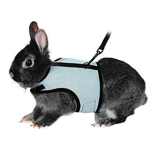 Voarge Hundegeschirr für Kaninchen, Kaninchen, Kätzchen, kein Ziehen, stilvolles Weste, für kleine Tiere, verstellbar, weich, atmungsaktiv, Set, Softgeschirr mit Blei - Größe XL (Himmelblau)