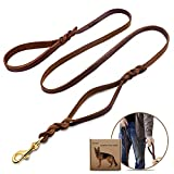Wellbro Luxury Genuine Leather Double Handle Dog Leash, Braided Training Lead with Traffic Handle, Easy Control and Heavy Duty, 1.8cm Width by 6ft Length, Brown
