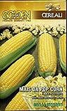 FRANCHI SEMENTI SEMENTE di Mais da Pop Corn in Confezione da...