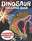 Dinosaur Coloring Book: Fun and Awesome Book for Kids or Adults, 40 Dinosaur Designs with Facts!