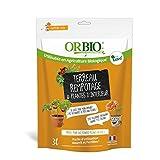 Oro marrón obitcrem3Tierra para macetas macetas y Plantas de Interior, Orange, 3L