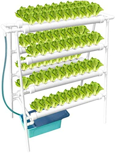 WEPLANT NFT Hydroponic Growing System 4 Layer Holes Time Ranking TOP17 with Cheap mail order sales 72